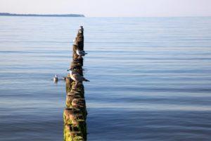 Ferienwohnung Romantica am Meer
